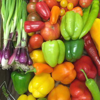 Slow Food – bewusst und gesund essen